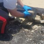 $2.35M of cocaine found on beach by DoE