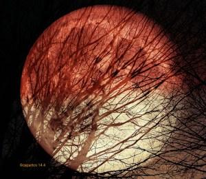 April Moon by Cazartco