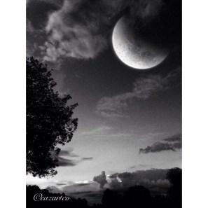 Darley Moon by Cazartco