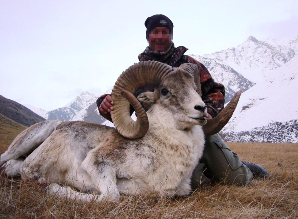 mongolia-argaly