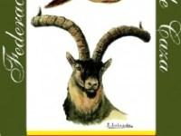 escudo-1-211x300