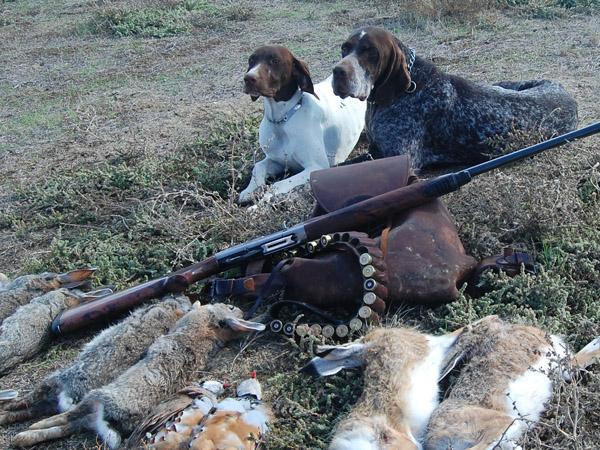 images_wonke_actualidad_nacional_20120530-caza-perros