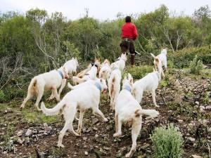 images_wonke_actualidad_nacional_20121001_extremadura