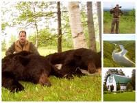 Canada: doblete de ursus americanus