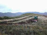 Aragón: caza intensiva para poner fin al daño en cultivos