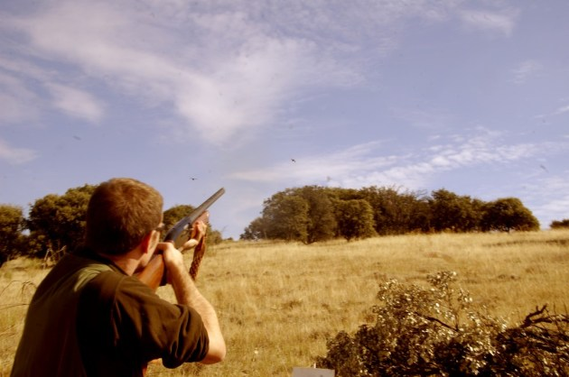 353 - Yerro o Fallo (2) cazador