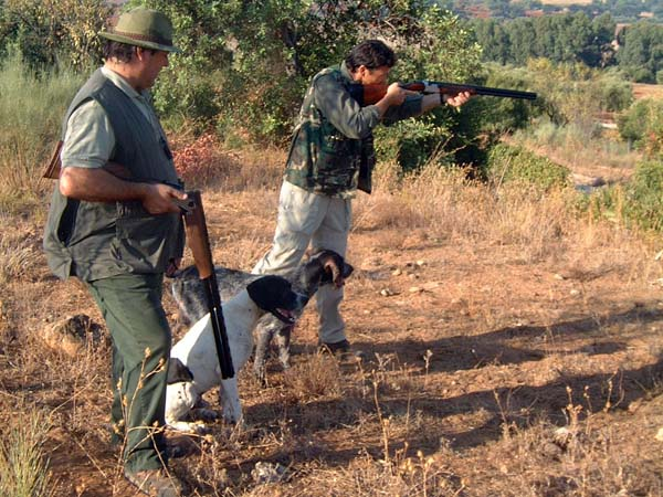 cazadores fedexcaza