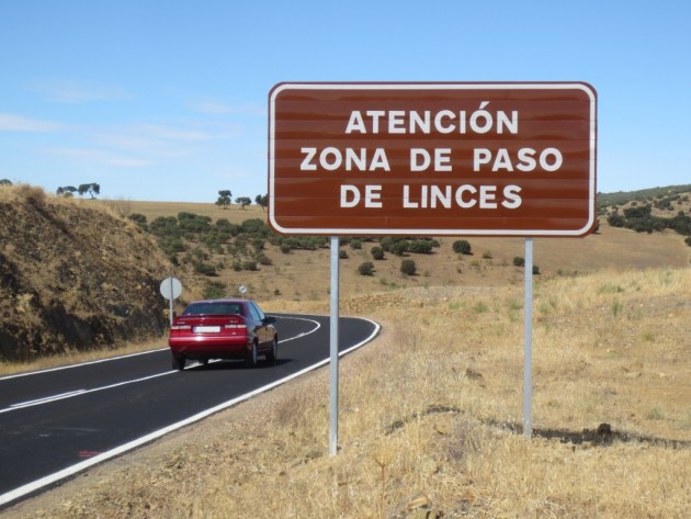 Iberlince señal tráfico tablilla paso fauna lince
