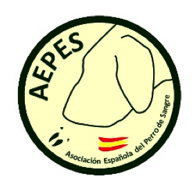 logo aepes