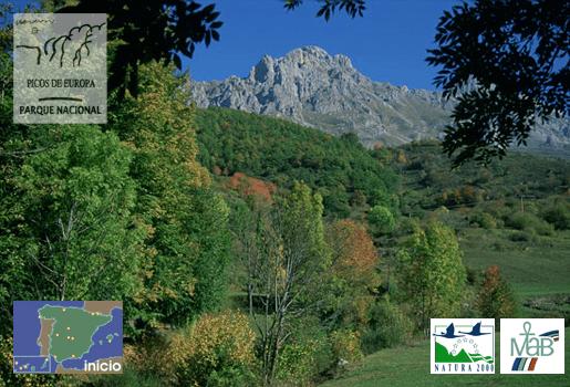 Picos_de_Europa parque nacional © MAGRAMA