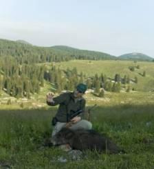 359 - Muflones Libres En Croacia (6)