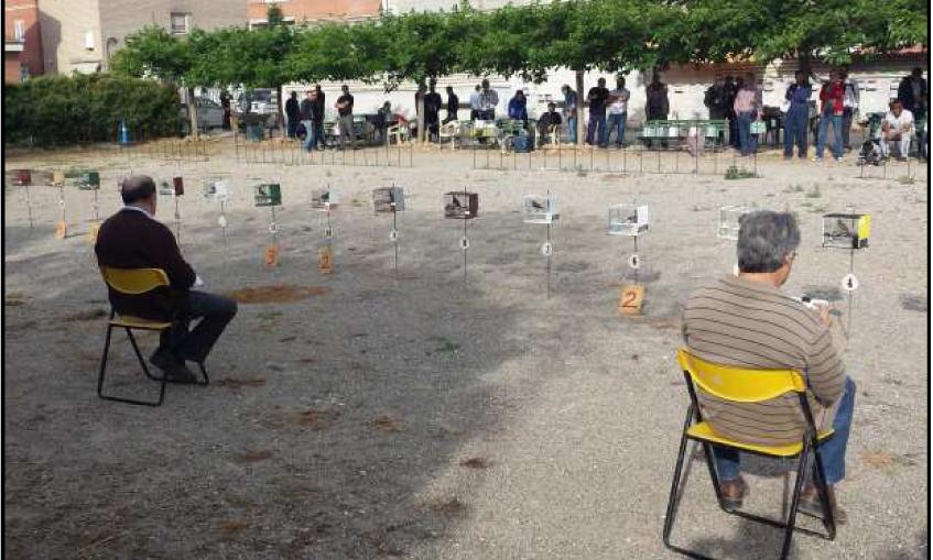 45¼ Campeonato Ocellaire de Catalu–a Canto Silvestre