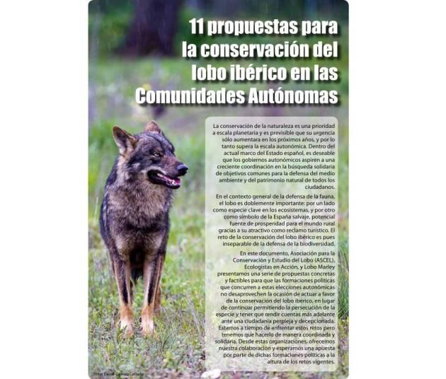 propuestas-lobo-1