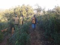 'La caza sostenible es la única posible', por J. L. Garrido