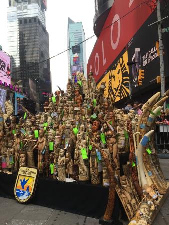 Una tonelada de marfil confiscado, además del marfil del Departamento de Estado para la Conservación del Medio Ambiente de Nueva York  y la Asociación de Zoológicos y Acuarios, fue destruido en Time Square.