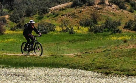 bicicleta en campo