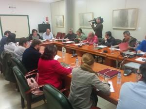 La consejera preside la reunión del Consejo Asesor de Medio Ambiente de Extremadura.