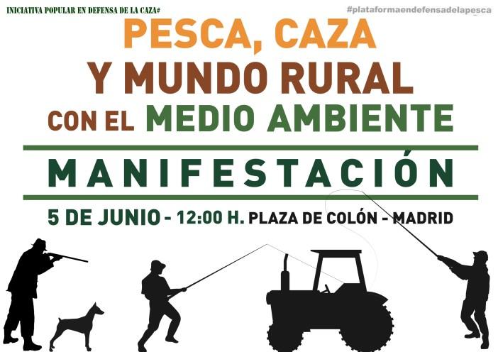 manifestacion madrid 5 junio
