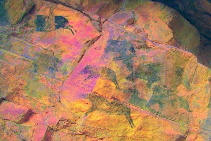 pinturas rupestres villafranca jabalies 2