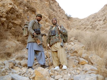 2 markhor de suleiman pakistan rececho