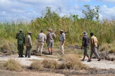 tanzania cazadores en busca del hipopotamo
