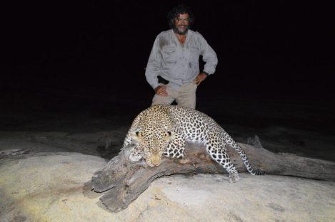 tanzania leopardo