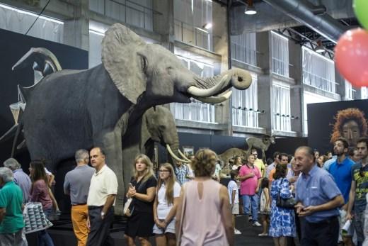 taxidermia elefante -feria-feciex-badajoz-2015