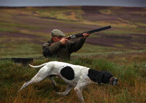 cazador-en-inglaterra