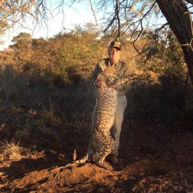 4-leopardo-namibia-marcial-gs
