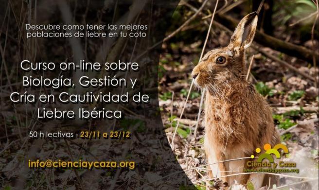 curso-online-liebre-ciencia-y-caza
