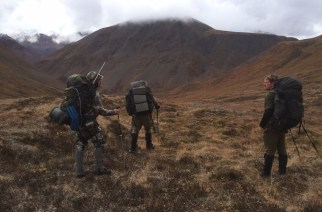 Cacería del borrego Dall en Alaska (II)