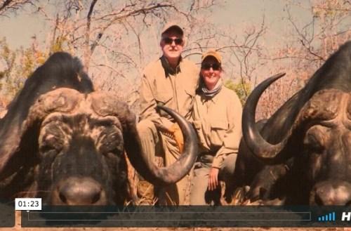 African Bufalo Safari Tracker LTD en Cinegética