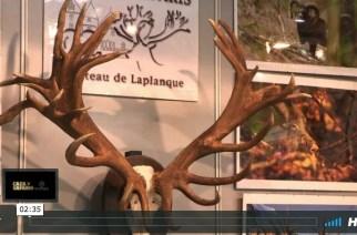 Chateau Laplanque en Cinegética