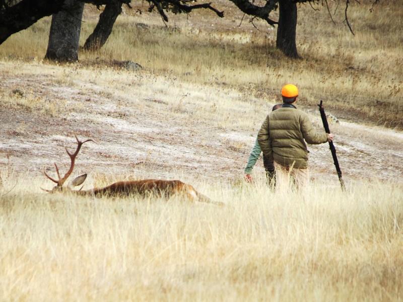 cazador formado