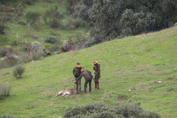 el Partido Popular caza