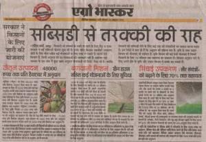 pali bhaskar 26 october 2015 wheat