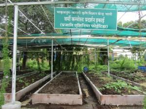 Vermicompost unit at KVK, Pali
