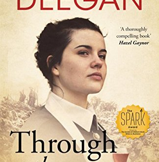 Through the Barricades - Denise Deegan - Book Cover