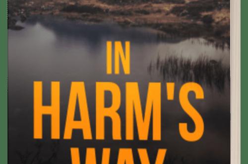 In Harm's Way - Owen Mullen - 3D Book Cover