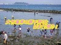 大竹海岸潮干狩りの時間と混雑状況を確認!2019はまぐり祭りの日程と料金も紹介!