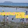 大竹海岸潮干狩りの時間と混雑状況を確認!2018はまぐり祭りの日程と料金も紹介!