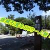 金城石畳を歩いて世界遺産をはしご!首里城から識名園へぶらり一人旅してみた!