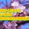 千代田さくらまつり・千鳥ヶ淵の桜2019/混雑状況と屋台の時間を確認!