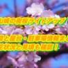 福山城の夜桜ライトアップの時間と屋台・駐車場情報まとめ2019!開花状況と見頃も確認!