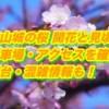 津山城の桜2019/開花と見頃!ライトアップ時間・駐車場・屋台情報を確認!