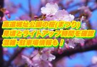 高遠城址公園の桜(まつり)2020見頃とライトアップ時間を確認!混雑・駐車場情報も!