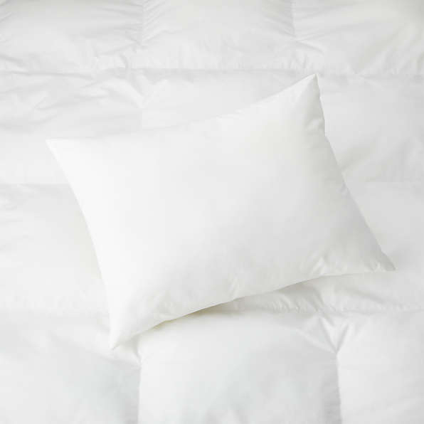 pillow inserts down and down