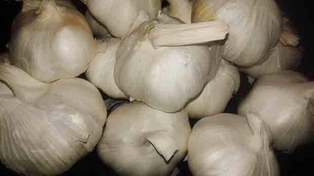 Agriculture Secretary Pinol admits garlic cartel exists, bans 43 traders