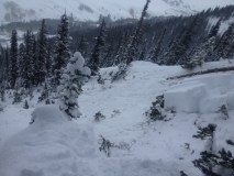 Snodgrass Avalanche