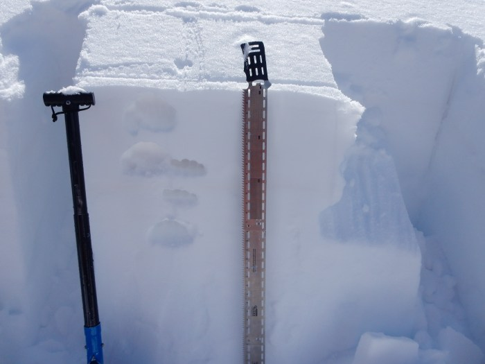 Climax Chutes. NNE aspect near treeline. 42 cm, 4F- faceting slab over 1.0 mm, 4F- rounding facets. ECTN 28 on this layer.